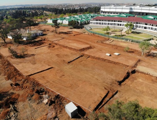 Olive Grove – Phase 1 leveling and platforms – 11 September 2019
